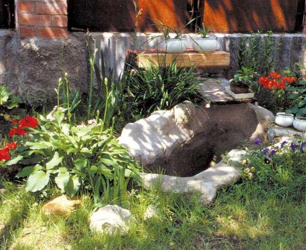 Как цветет подсолнечник медвежонок